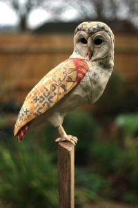 Barn_Owl_James_Ort_Phoenix_Studio_2015 (32)