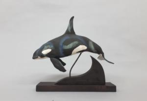 Orca James Ort-13