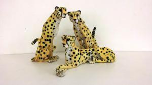The_Coalition_(cheetahs)_James_Ort
